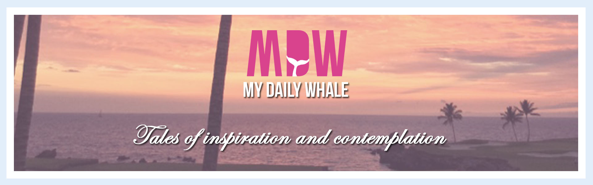 My Daily Whale Blog by Alessandra Mayer